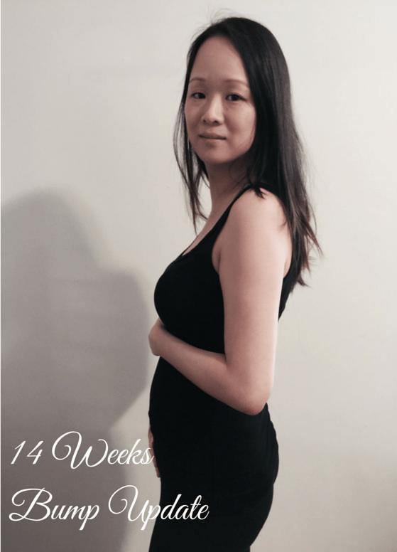 14 Weeks Bump Update
